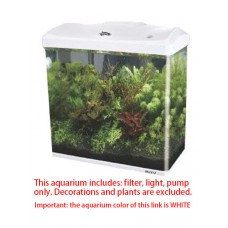 BOYU EC-400 glass aquarium fish tank white color small for home and office